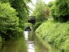 2012-06 Royal Canal Green & Silver by DP Woolheaddscn3581