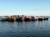 2012-08-2 Kildare boats on Lough Ree by DP Woolhead